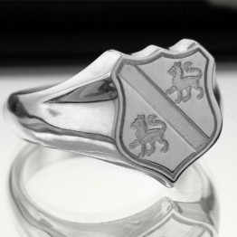 Family Coat of Arms Ring - Shield Ring  (Medium)